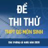 Đề thi thử THPTQG 2020 môn Sinh Học các trường, sở GD&ĐT trên cả nước File Word