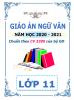 Giáo án theo chủ đề 5 hoạt động PTNL - 2020-2021 - Ngữ Văn - Lớp 11 - File word